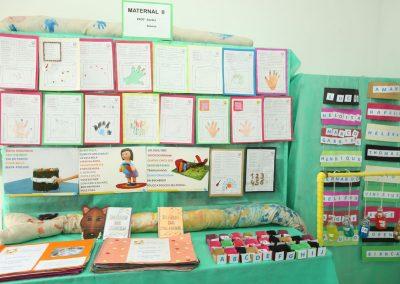 Mostra Cultural-Colegio Ipe-17