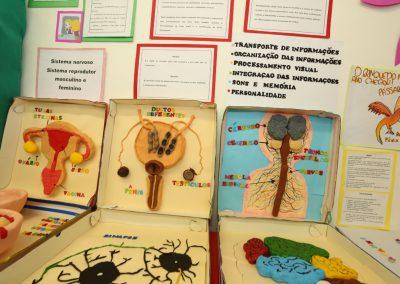 Mostra Cultural-Colegio Ipe-31
