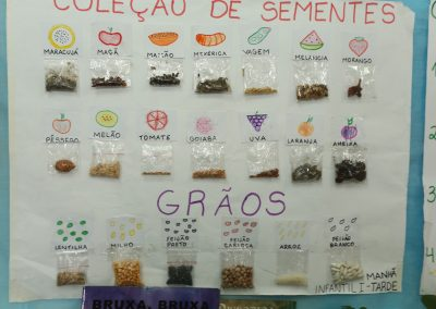 Mostra Cultural-Colegio Ipe-25