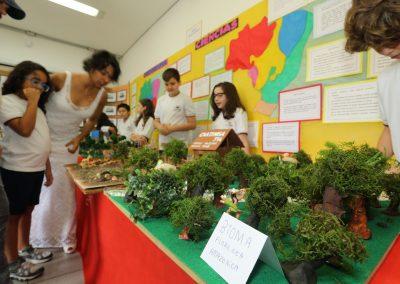 Mostra Cultural-Colegio Ipe-32